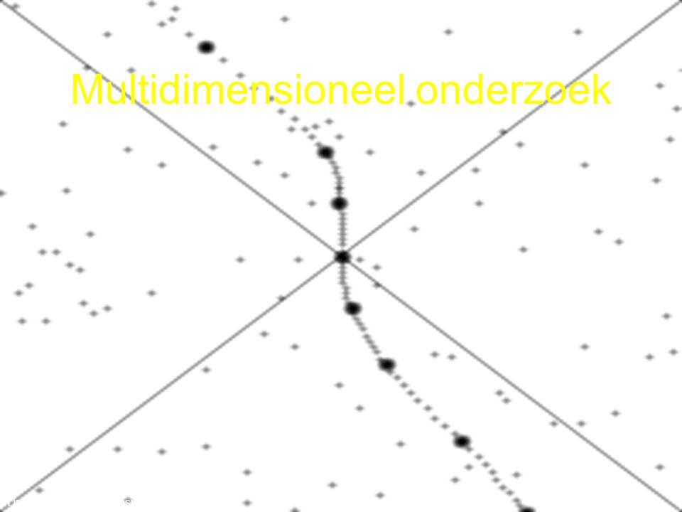 Multidimensioneel onderzoek