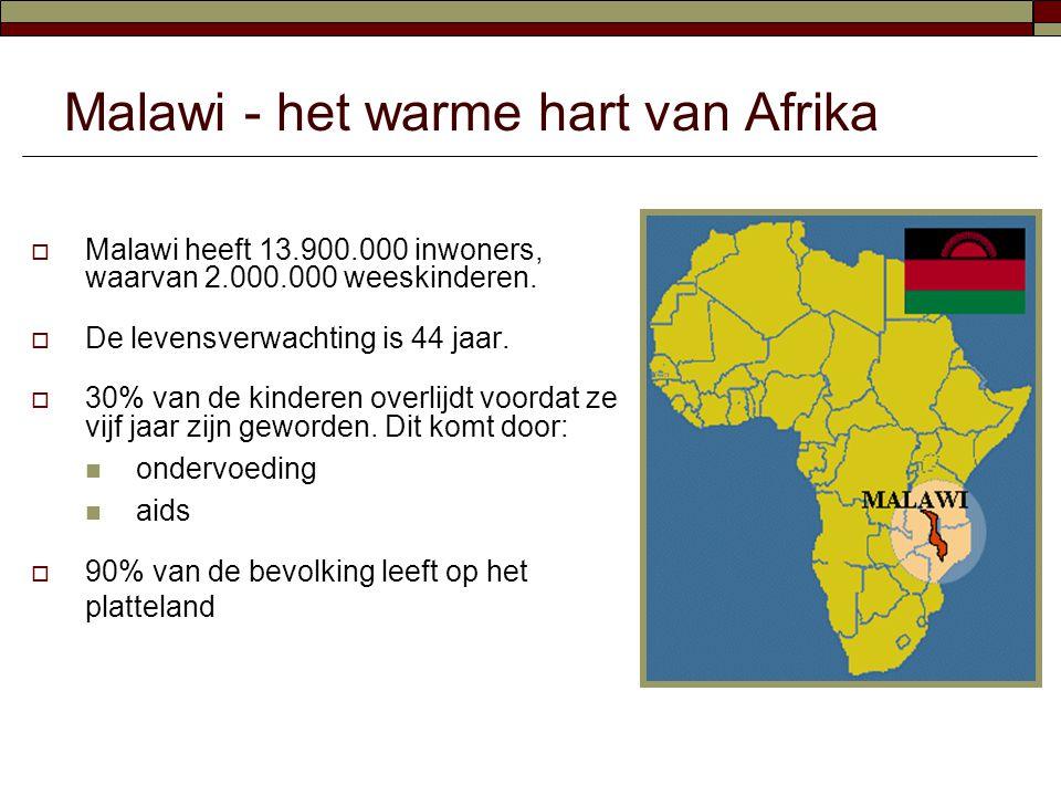 Malawi - het warme hart van Afrika