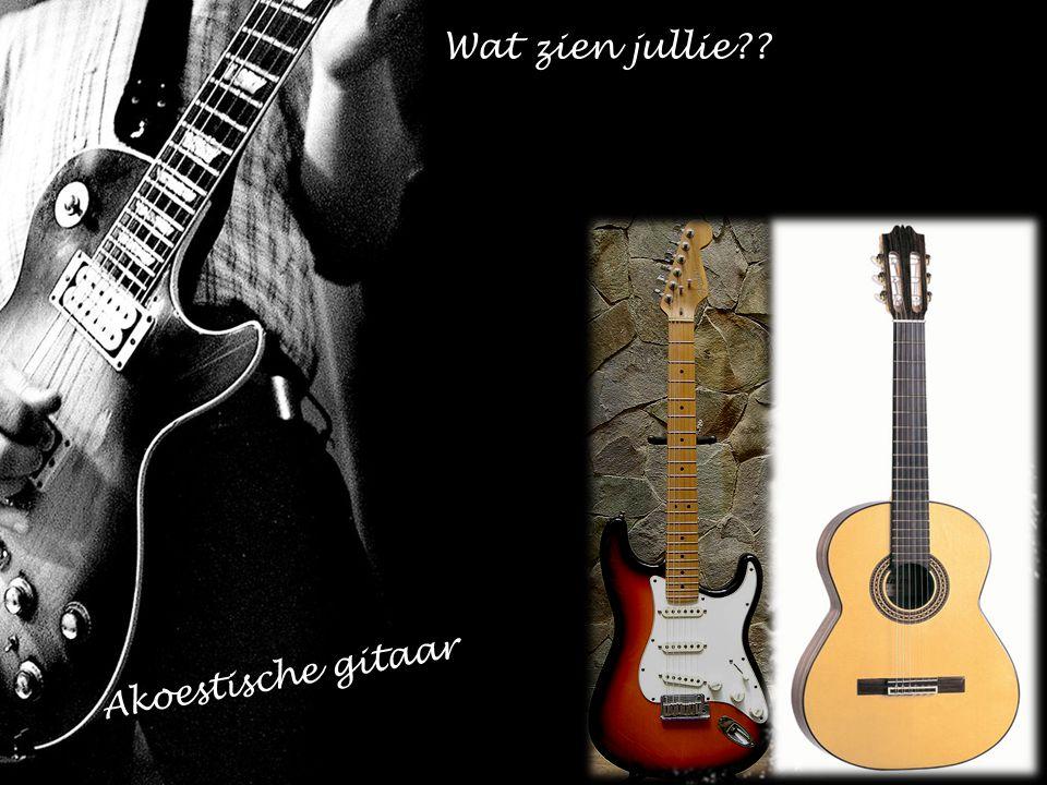 Wat zien jullie Akoestische gitaar