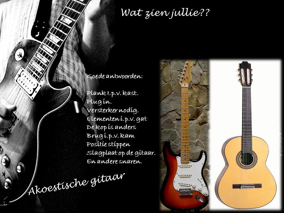 Wat zien jullie Akoestische gitaar Goede antwoorden: