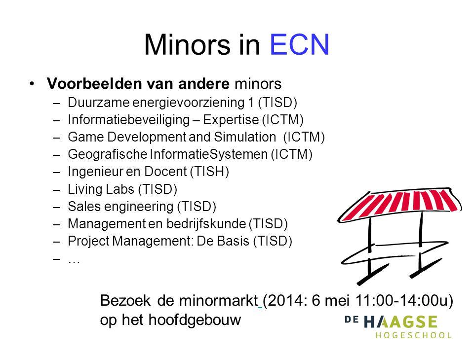 Minors in ECN Voorbeelden van andere minors