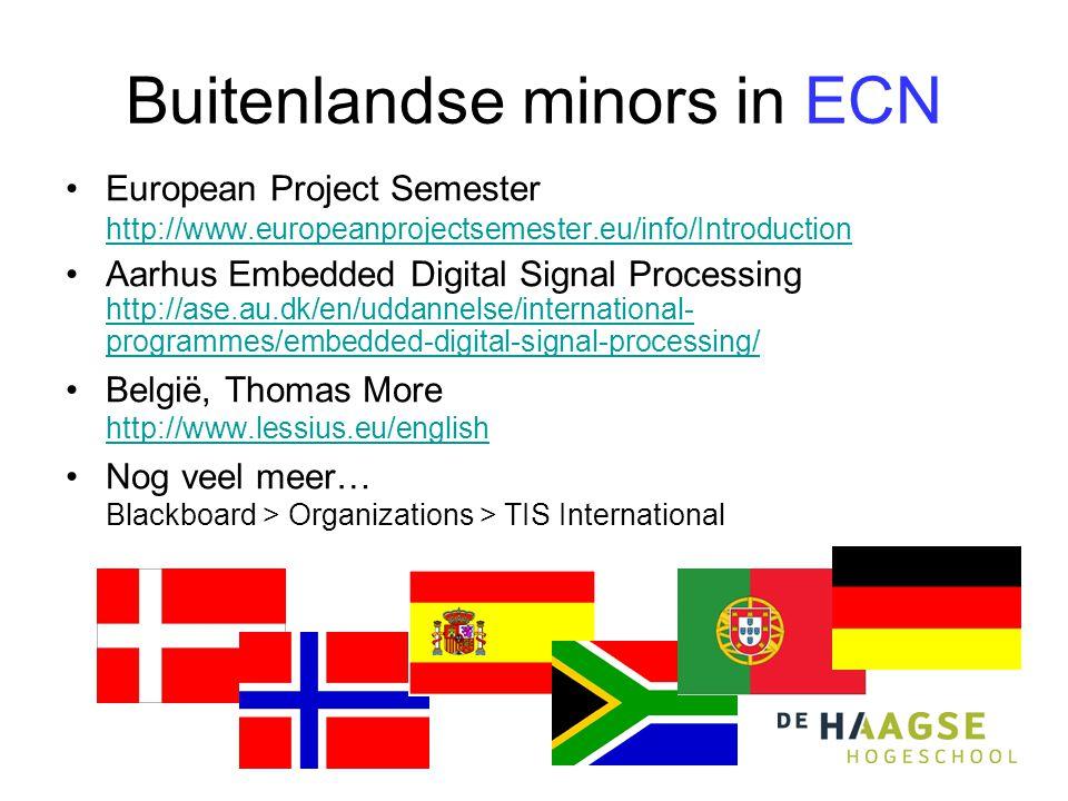 Buitenlandse minors in ECN
