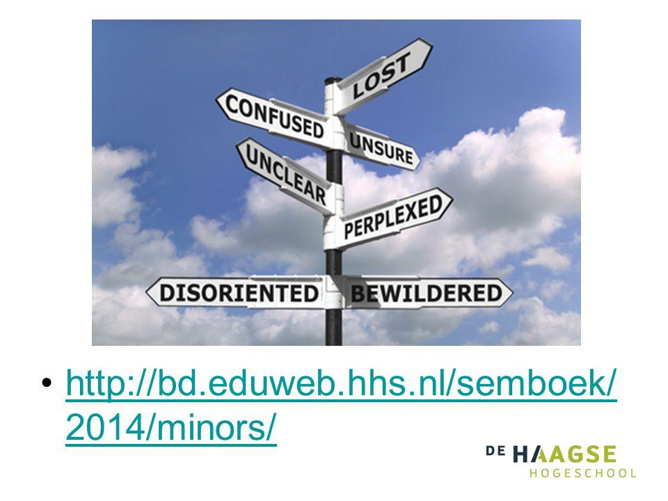 http://bd.eduweb.hhs.nl/semboek/2014/minors/