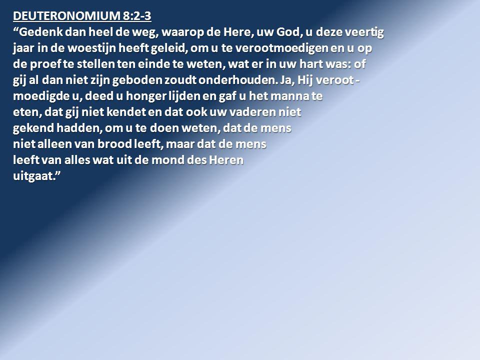 DEUTERONOMIUM 8:2-3