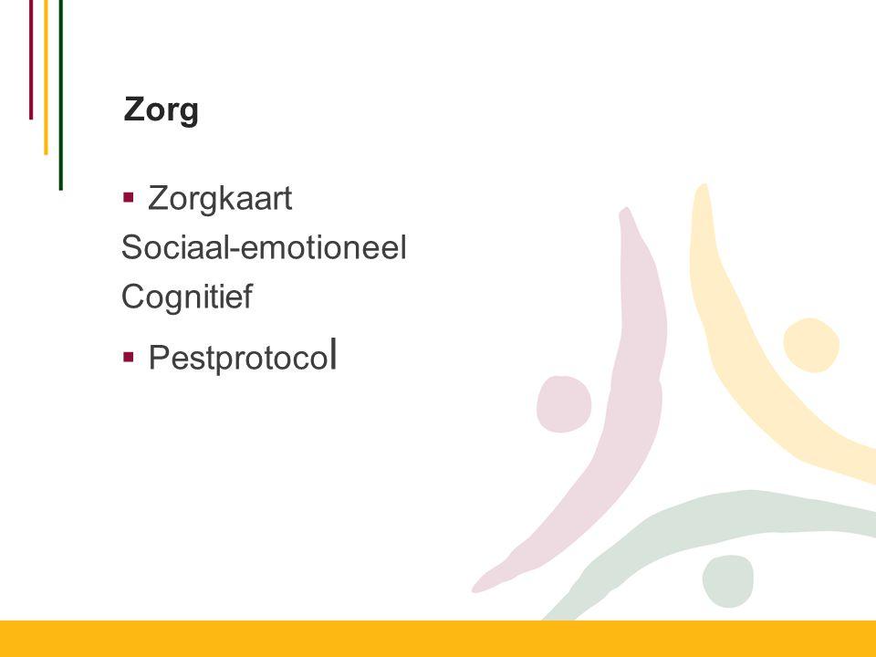 Zorg Zorgkaart Sociaal-emotioneel Cognitief Pestprotocol