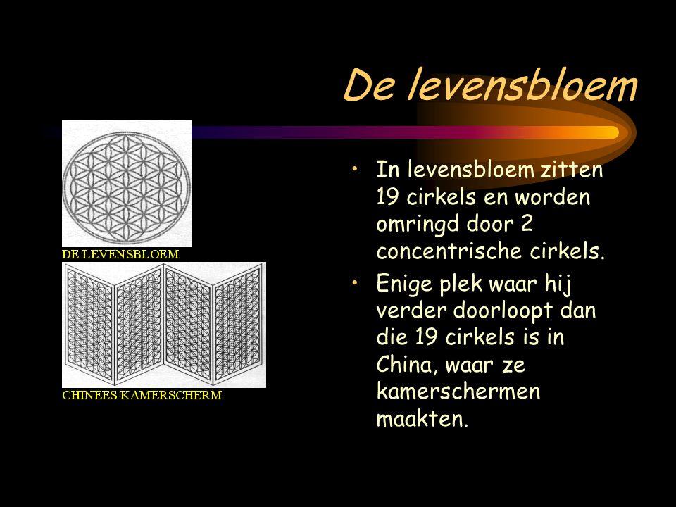 De levensbloem In levensbloem zitten 19 cirkels en worden omringd door 2 concentrische cirkels.