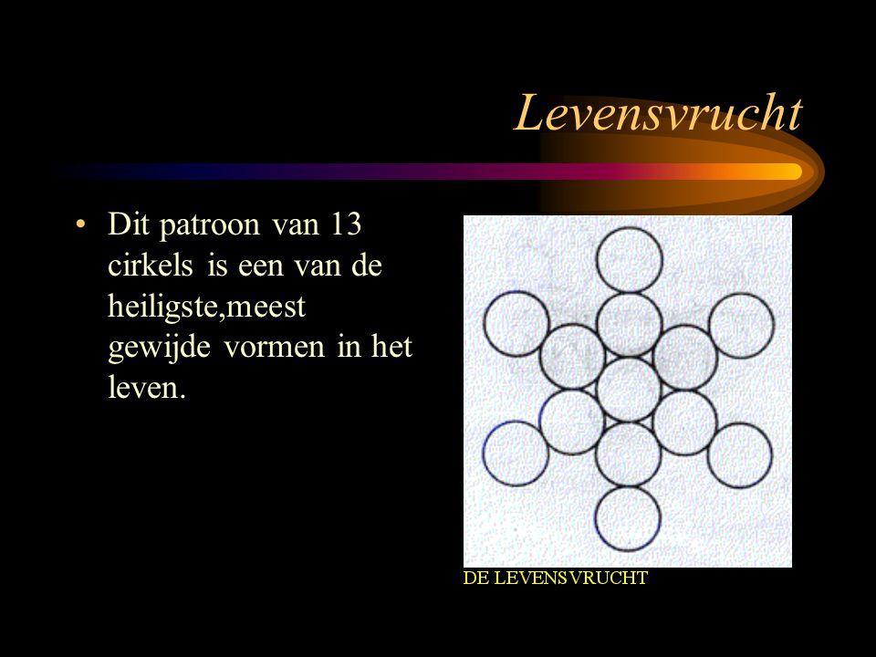 Levensvrucht Dit patroon van 13 cirkels is een van de heiligste,meest gewijde vormen in het leven.