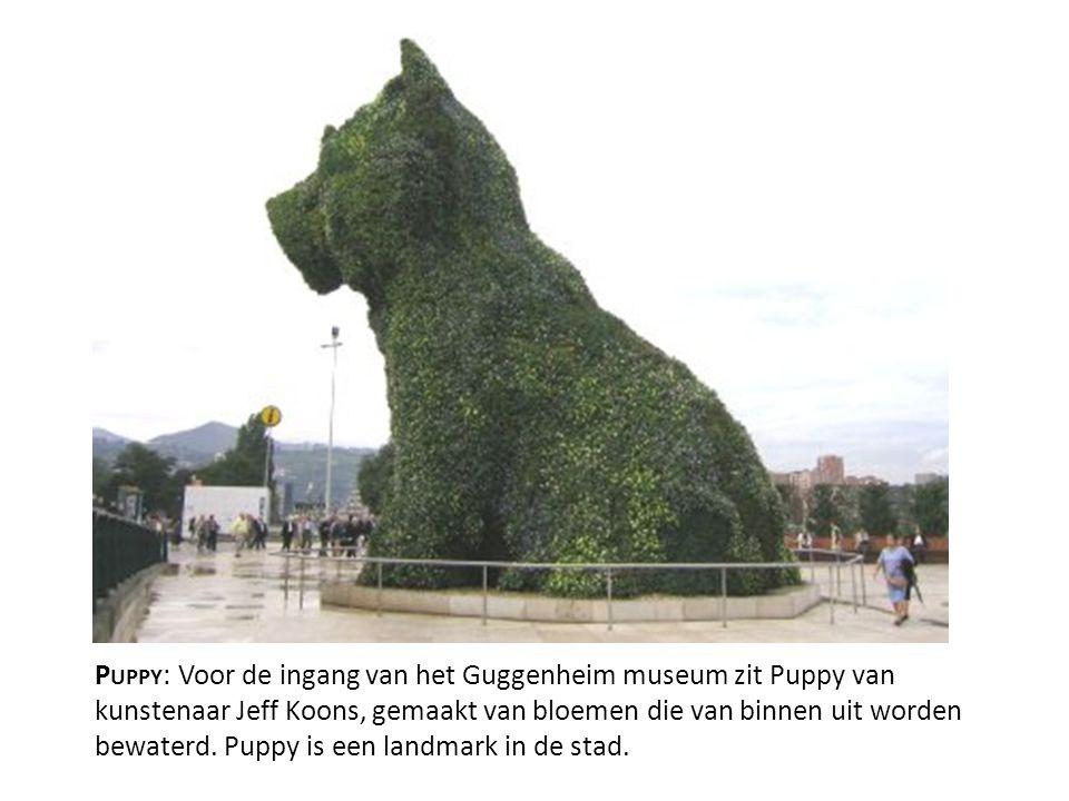 Puppy: Voor de ingang van het Guggenheim museum zit Puppy van kunstenaar Jeff Koons, gemaakt van bloemen die van binnen uit worden bewaterd.