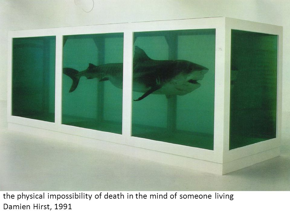 the physical impossibility of death in the mind of someone living Damien Hirst, 1991