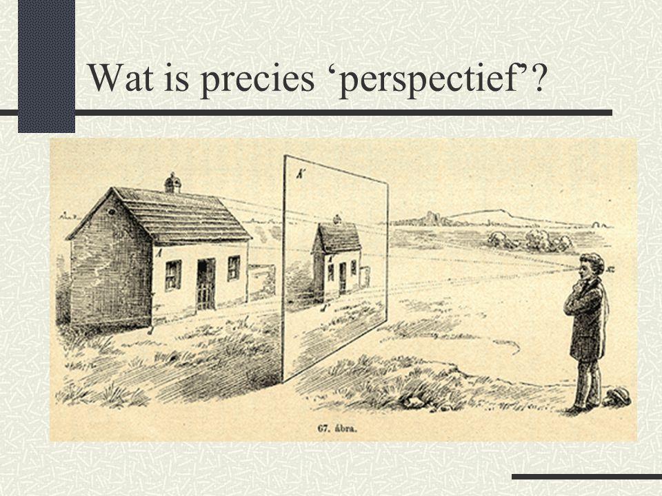 Wat is precies 'perspectief'