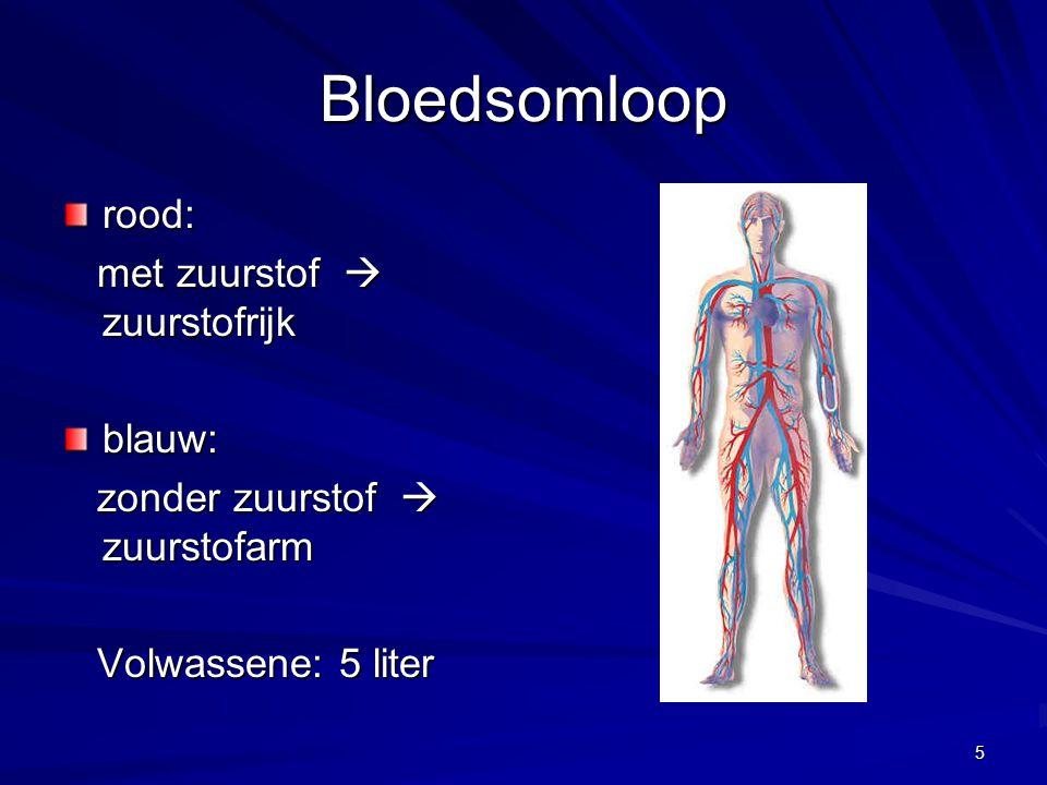 Bloedsomloop rood: met zuurstof  zuurstofrijk blauw: