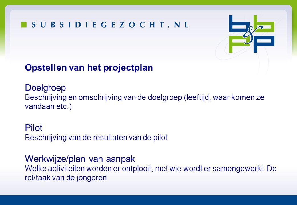 Opstellen van het projectplan