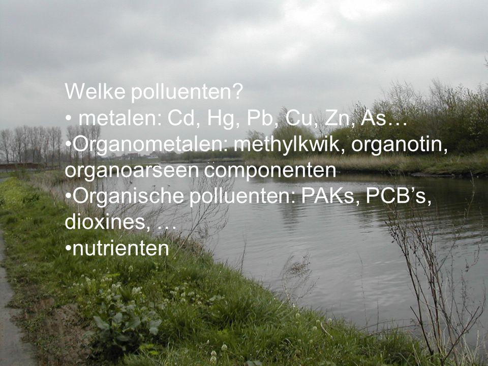 Welke polluenten metalen: Cd, Hg, Pb, Cu, Zn, As… Organometalen: methylkwik, organotin, organoarseen componenten.