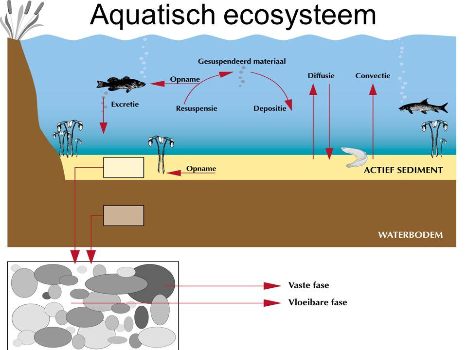 Aquatisch ecosysteem