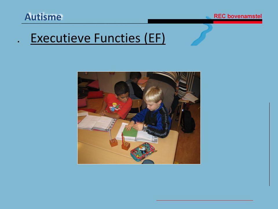 . Executieve Functies (EF)