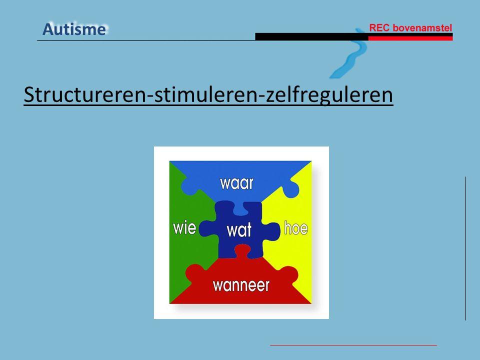 Structureren-stimuleren-zelfreguleren