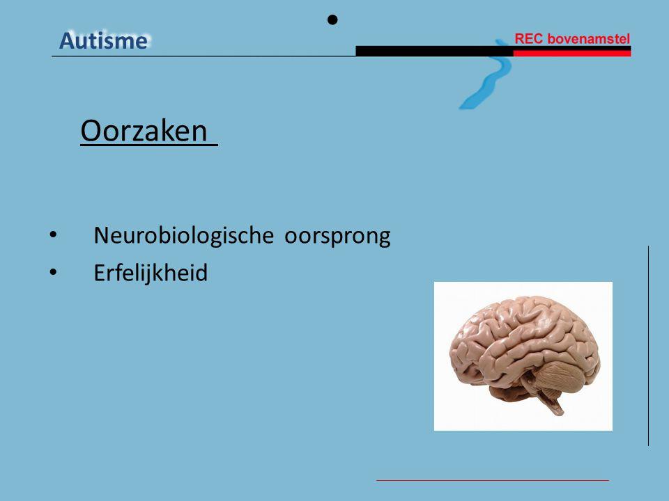 Oorzaken Neurobiologische oorsprong Erfelijkheid