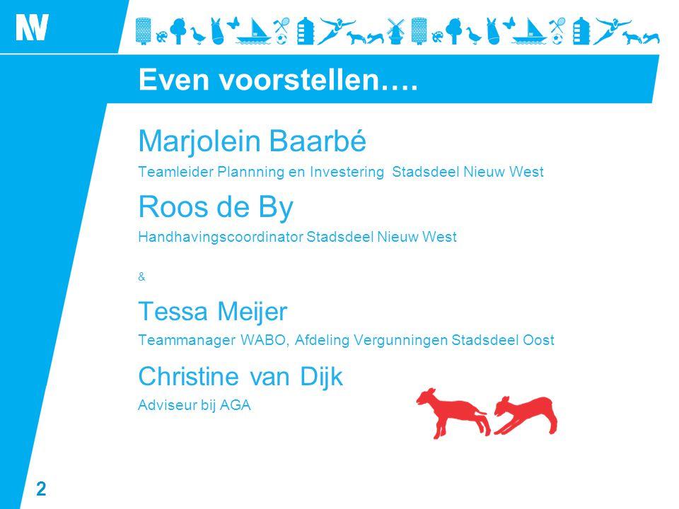 Even voorstellen…. Marjolein Baarbé Roos de By Tessa Meijer