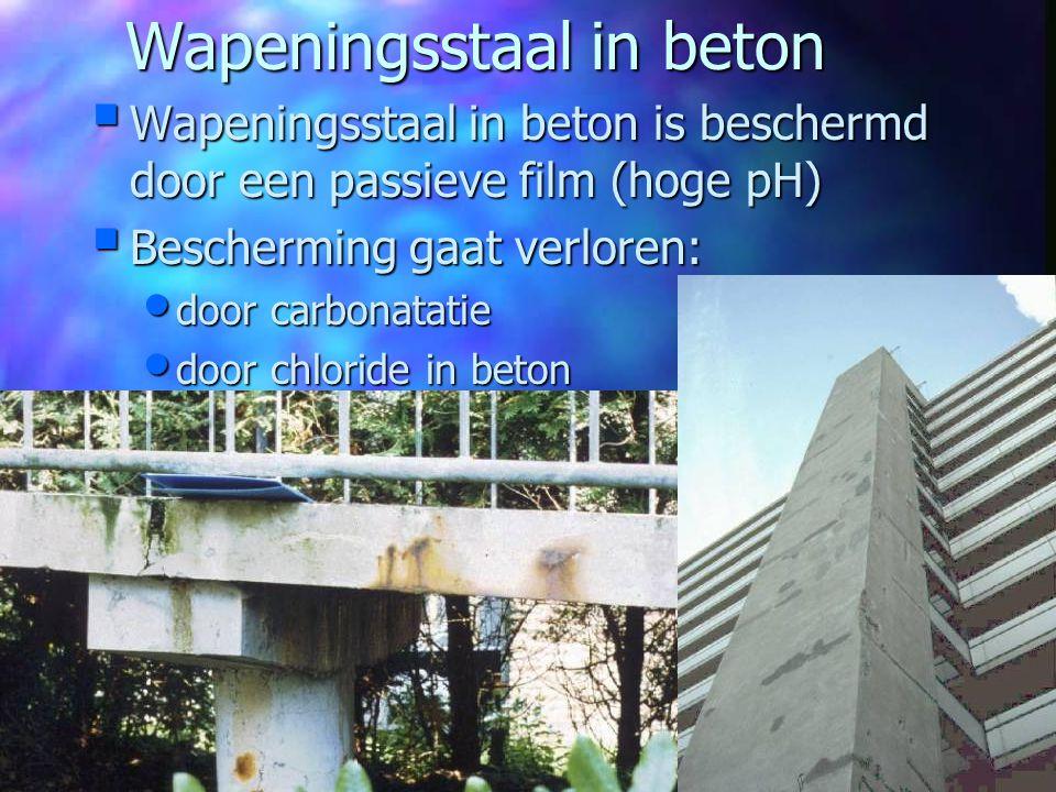 Wapeningsstaal in beton
