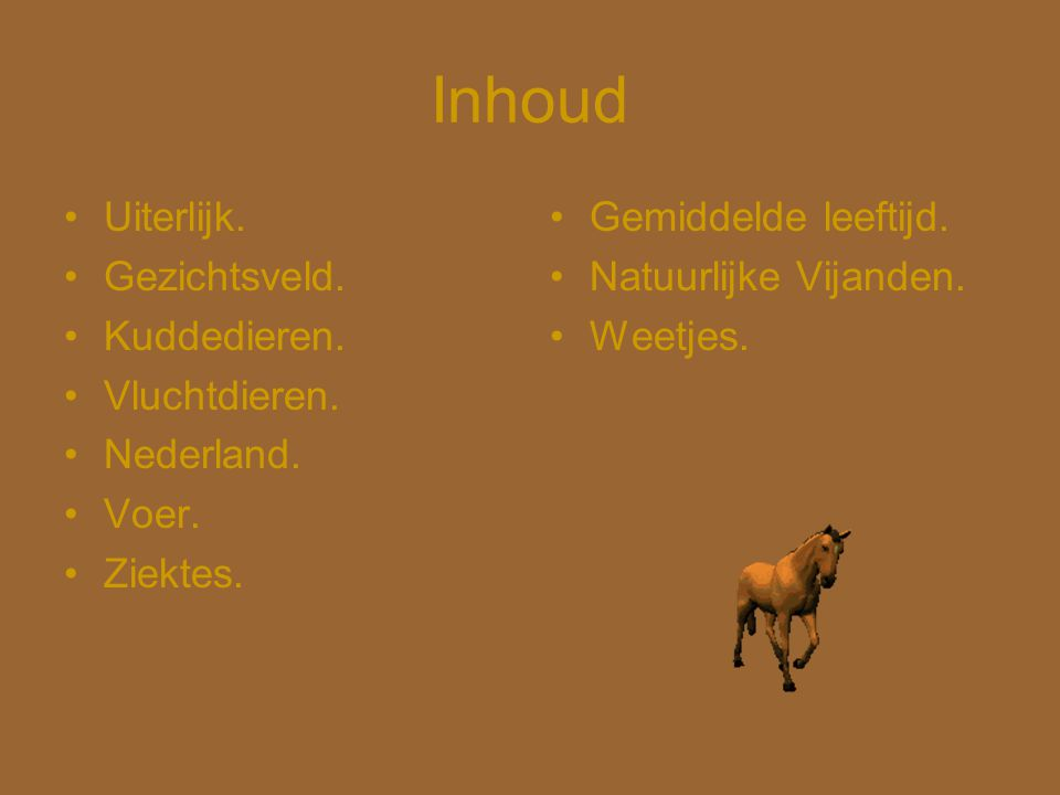 Inhoud Uiterlijk. Gezichtsveld. Kuddedieren. Vluchtdieren. Nederland.