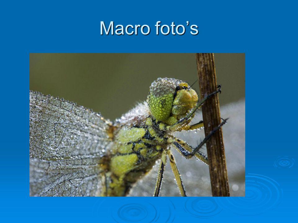 Macro foto's