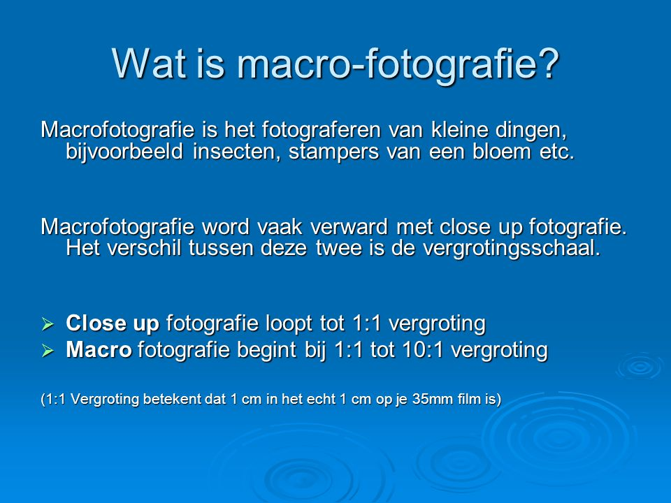 Wat is macro-fotografie