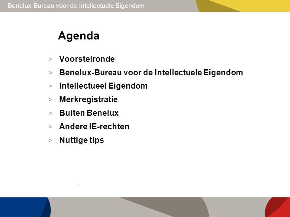 Agenda Voorstelronde Benelux-Bureau voor de Intellectuele Eigendom