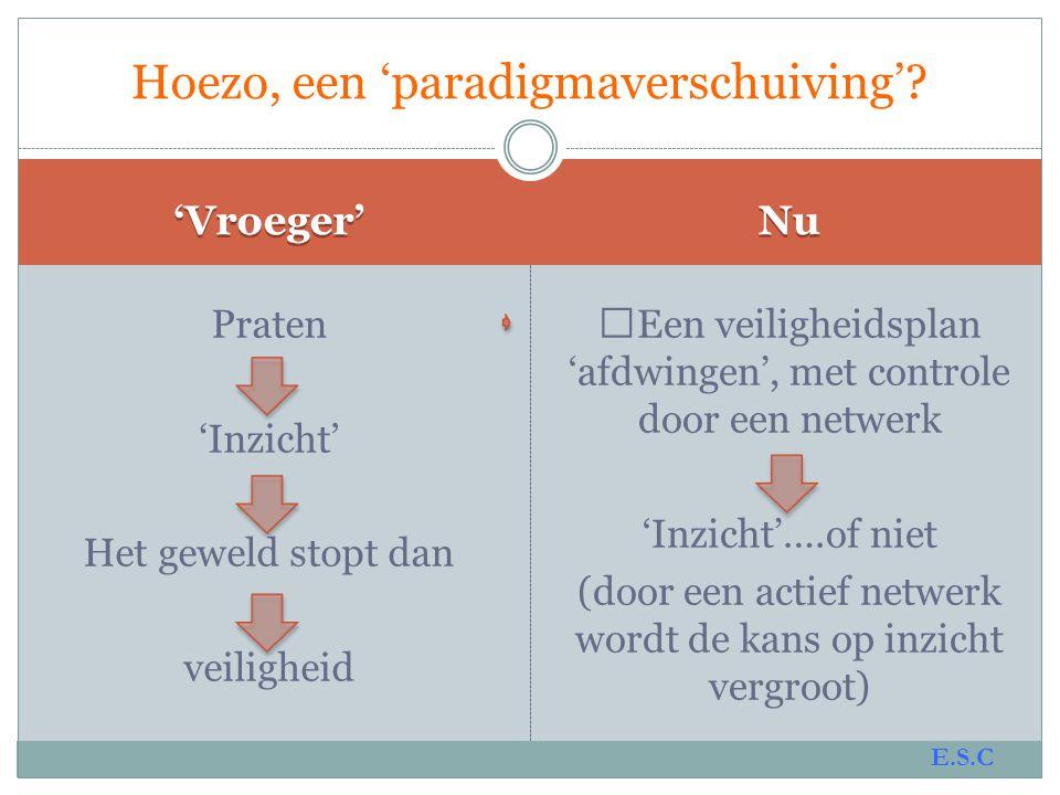 Hoezo, een 'paradigmaverschuiving'