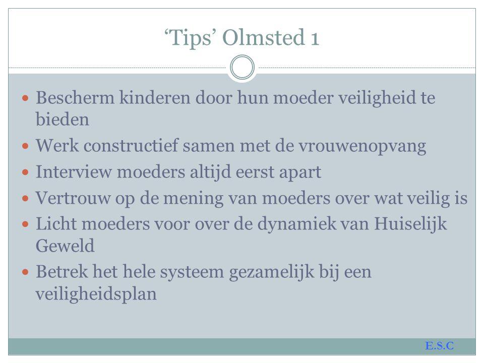 'Tips' Olmsted 1 Bescherm kinderen door hun moeder veiligheid te bieden. Werk constructief samen met de vrouwenopvang.