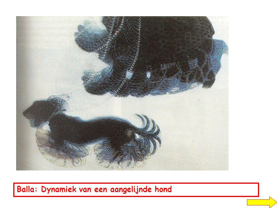 Balla: Dynamiek van een aangelijnde hond