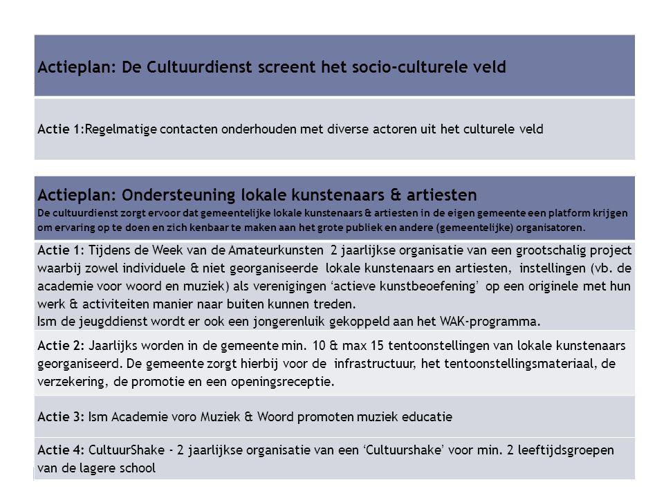 Actieplan: De Cultuurdienst screent het socio-culturele veld
