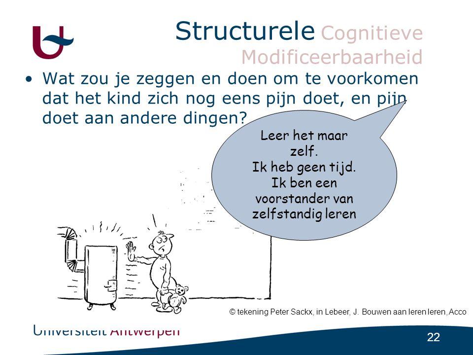 Structurele Cognitieve Modificeerbaarheid
