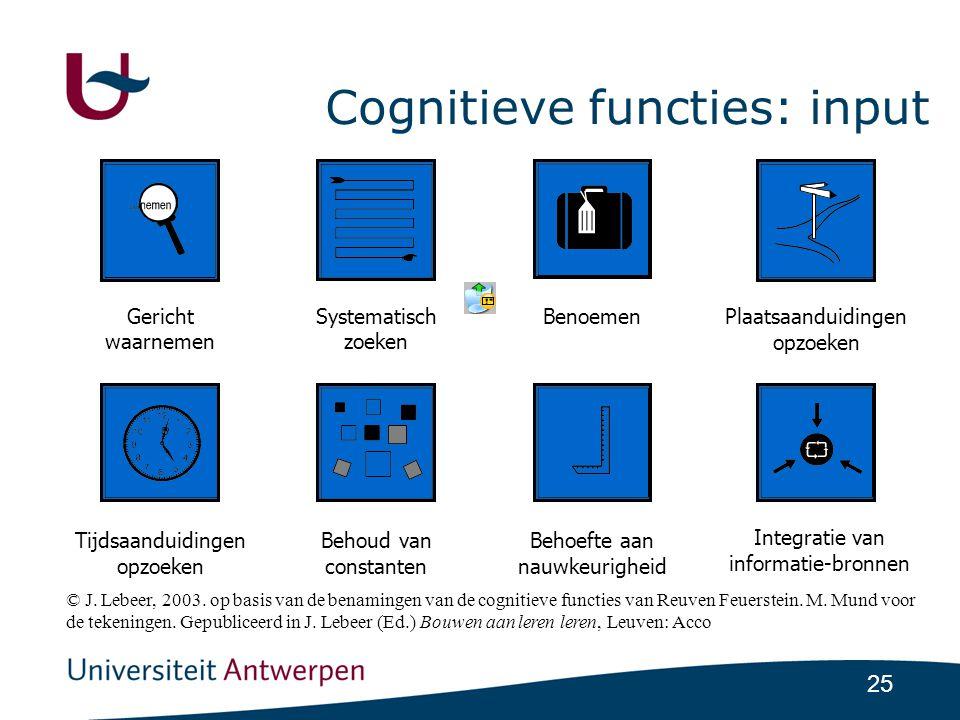 Cognitieve functies: input