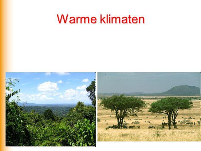 Warme klimaten