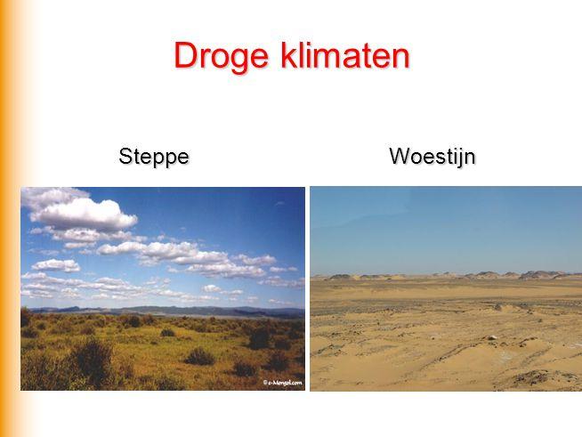 Droge klimaten Steppe Woestijn