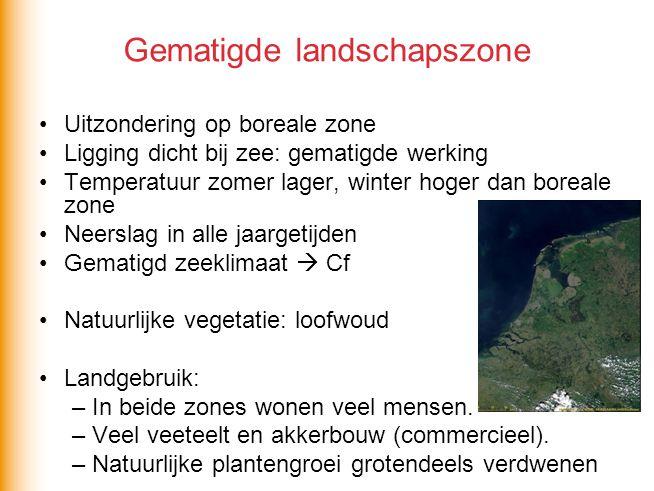 Gematigde landschapszone