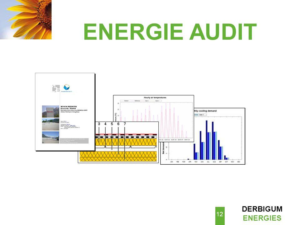 ENERGIE AUDIT
