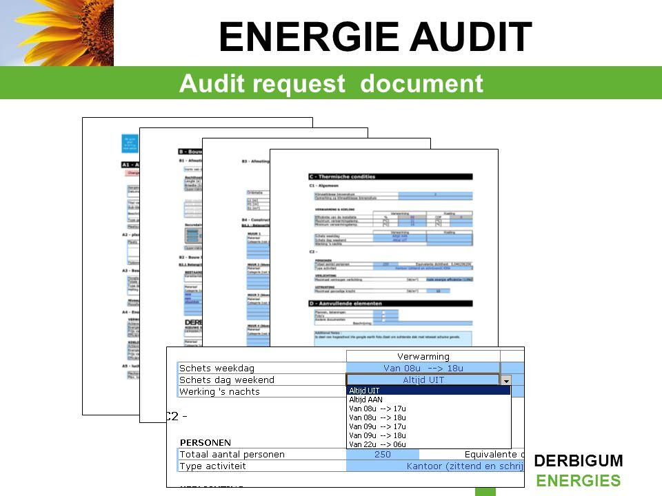 Audit request document
