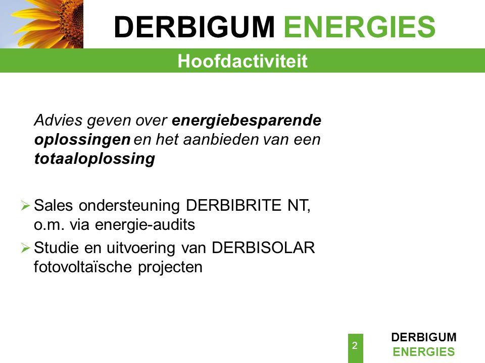 DERBIGUM ENERGIES Hoofdactiviteit