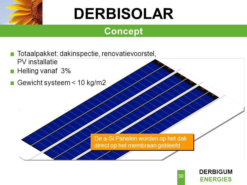 DERBISOLAR Concept. Totaalpakket: dakinspectie, renovatievoorstel, PV installatie. Helling vanaf 3%