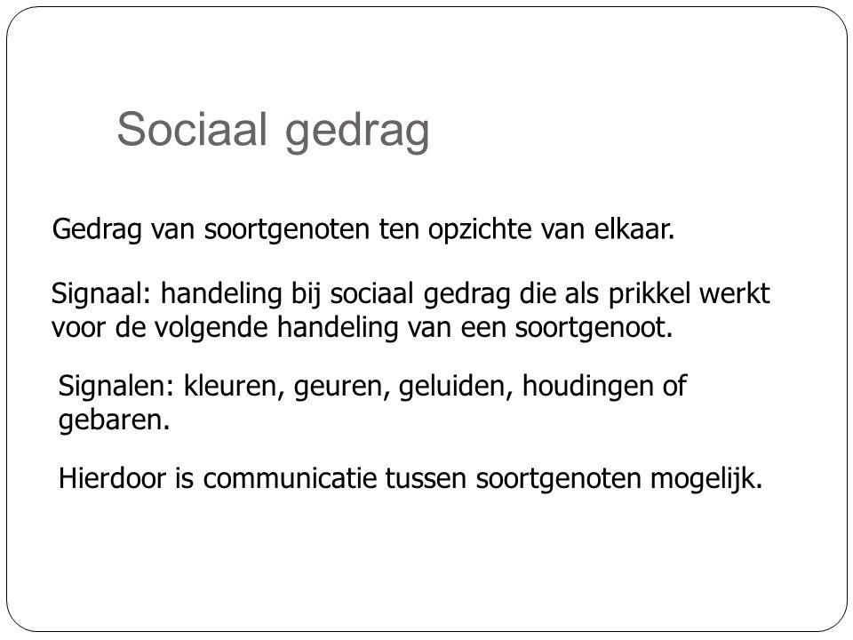 Sociaal gedrag Gedrag van soortgenoten ten opzichte van elkaar.