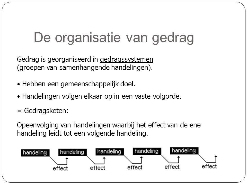 De organisatie van gedrag