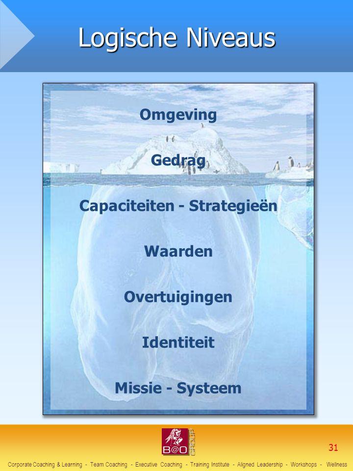 Capaciteiten - Strategieën