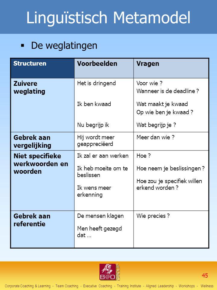 Linguïstisch Metamodel