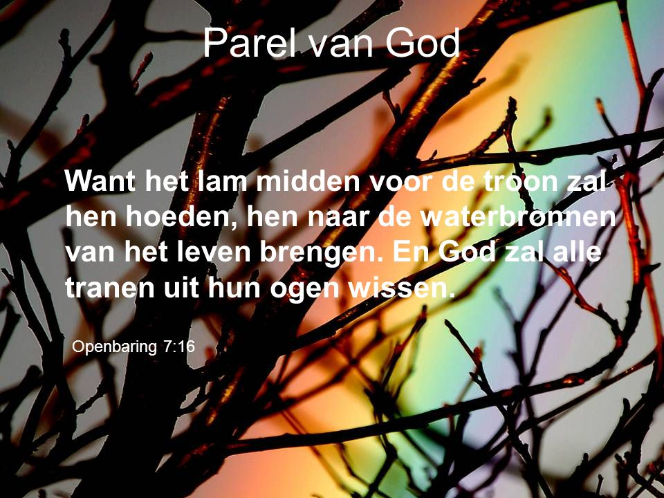 Parel van God
