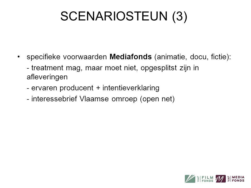 SCENARIOSTEUN (3) specifieke voorwaarden Mediafonds (animatie, docu, fictie): - treatment mag, maar moet niet, opgesplitst zijn in afleveringen.