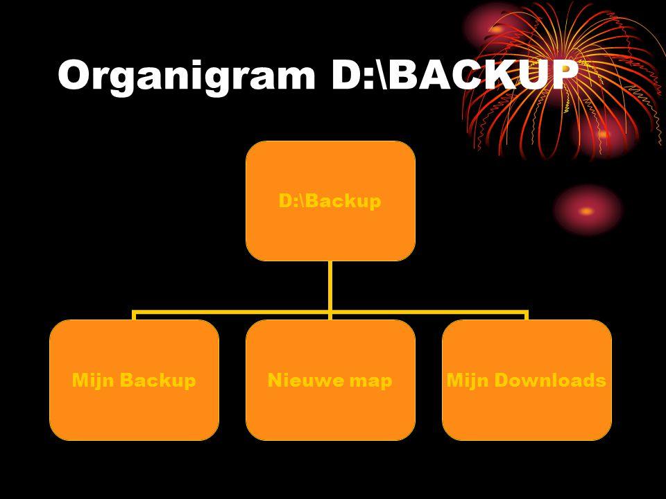 Organigram D:\BACKUP