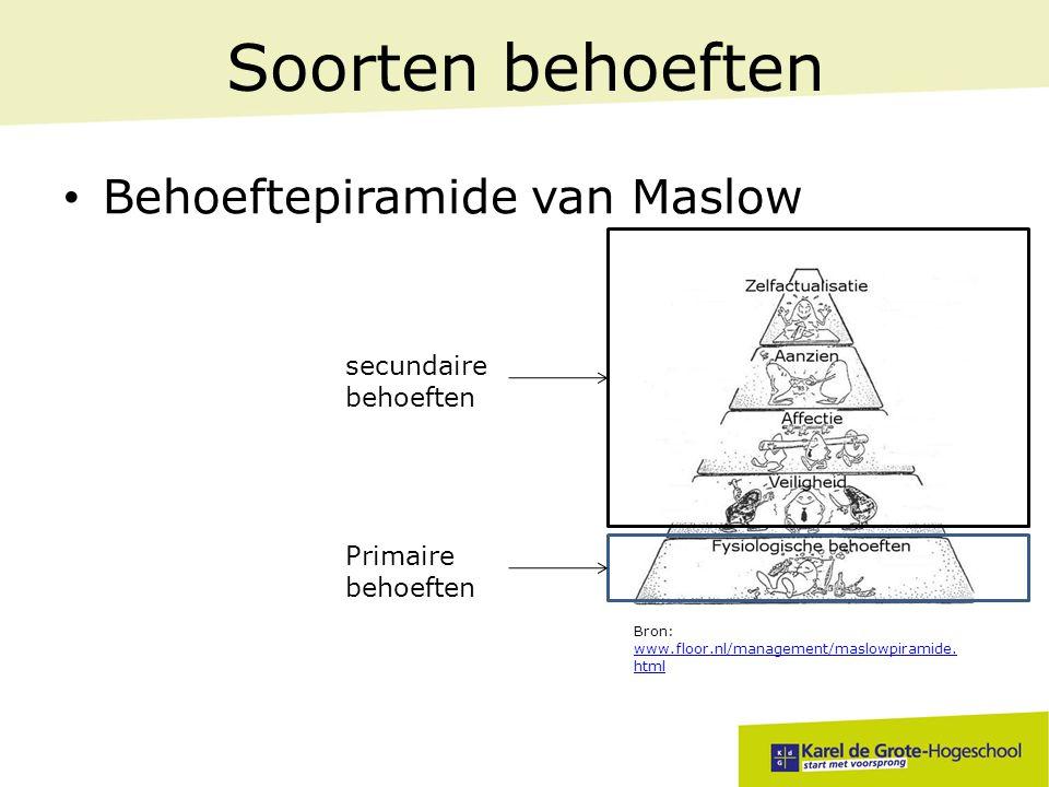 Soorten behoeften Behoeftepiramide van Maslow secundaire behoeften