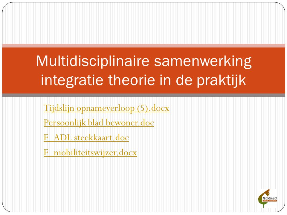 Multidisciplinaire samenwerking integratie theorie in de praktijk