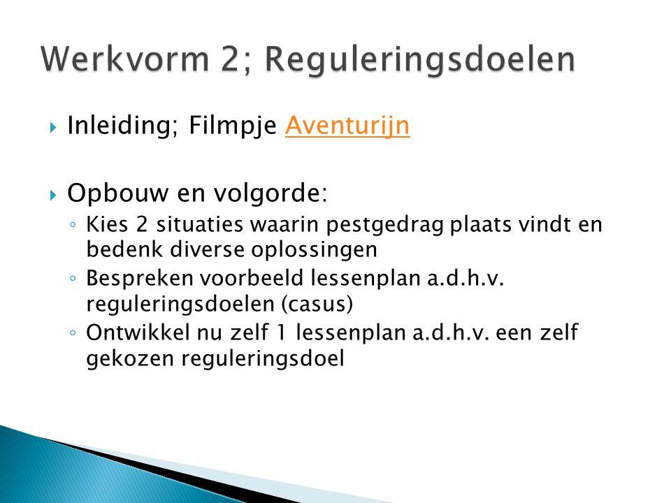 Werkvorm 2; Reguleringsdoelen